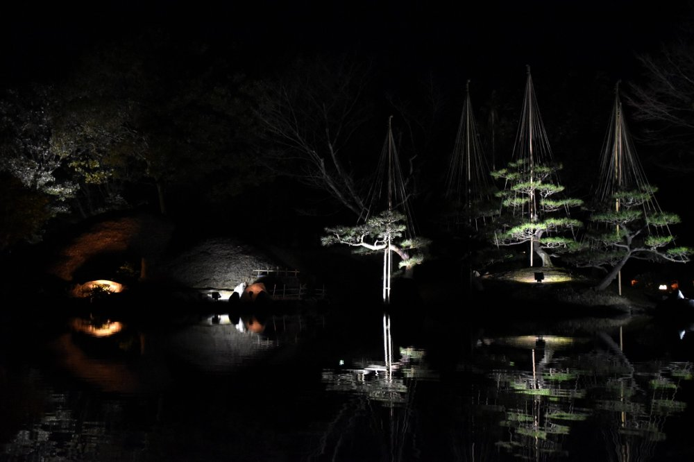 Reflexo simétrico no lago