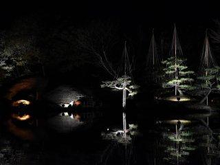 Symmetrical reflection on the pond