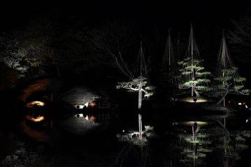 養浩館庭園: 春のライトアップ