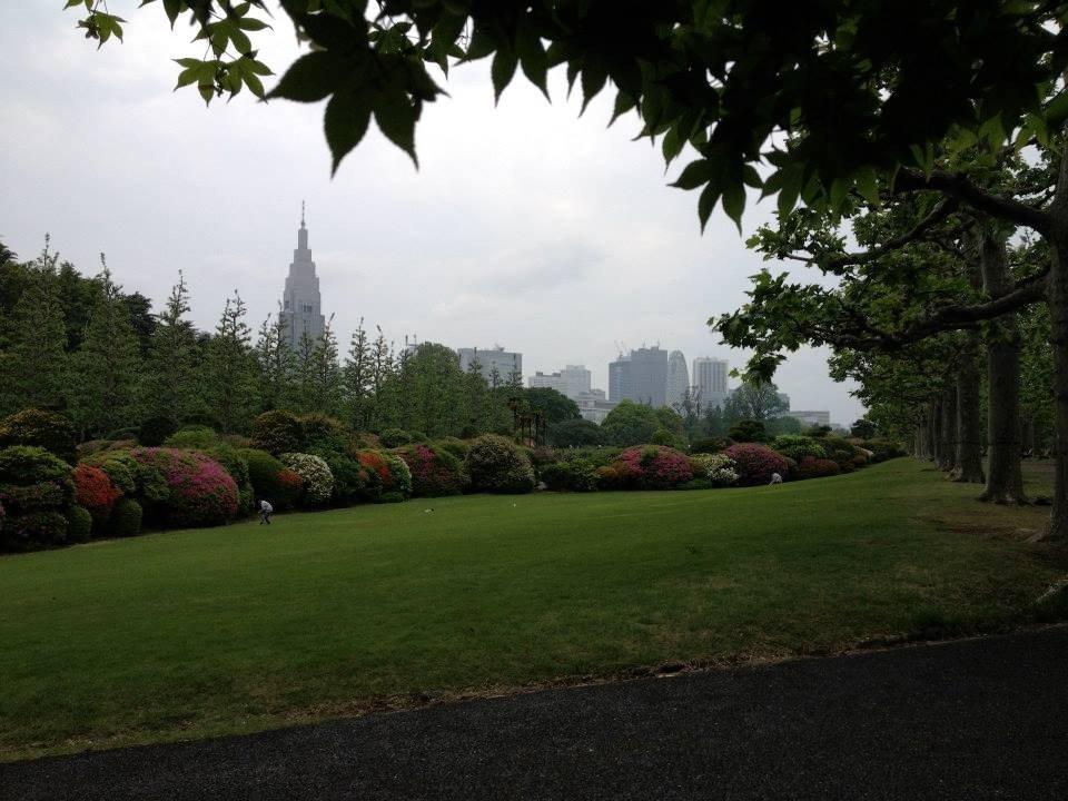 Shinjuku Skyline dari Shinjuku Gyoen National Garden