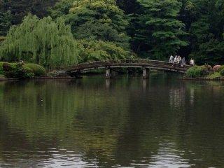 Danau yang indah di taman Shinjuku