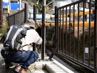 ช่างภาพคนนี้กำลังรอให้รถไฟออกมาจากอุโมงค์