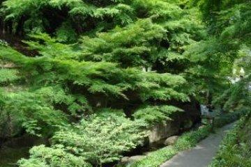 Tokugawa-en
