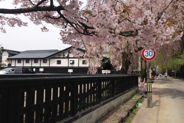 Весна в Какунодате