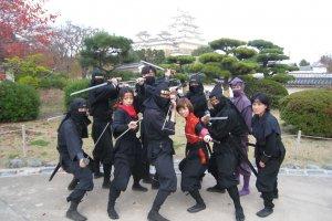 Dewan Ninja