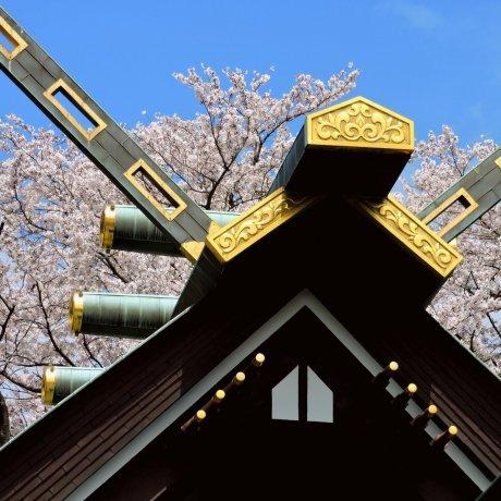 ศาลเจ้า Toun-ji และ Sugiyama