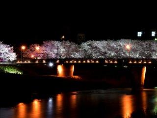 """""""Ponte Sakura"""", apreciada a partir de um outro ângulo"""