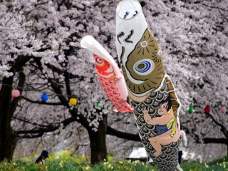 The child hanging on the gold & black carp is probably Kintaro (Golden Boy) from Japanese folklore. He is a symbol of a strong boy. Since carp streamers are set for Boy's Day on May 5th, Kintaro must be painted on one of them to pray for boys' healthy growth into strong men.