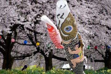 <p>The child hanging on the gold &amp; black carp is probably Kintaro (Golden Boy) from Japanese folklore. He is a symbol of a strong boy. Since carp streamers are set for Boy&#39;s Day on May 5th, Kintaro must be painted on one of them to pray for boys&#39; healthy growth into strong men.</p>