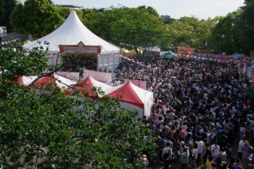 International Festivals at Yoyogi