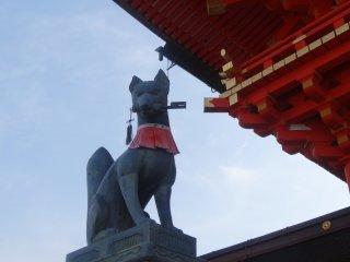 หนึ่งในหลายๆ คิซึตเนะ (kitsune) ของศาลเจ้าฟุชิมิ อินะริ