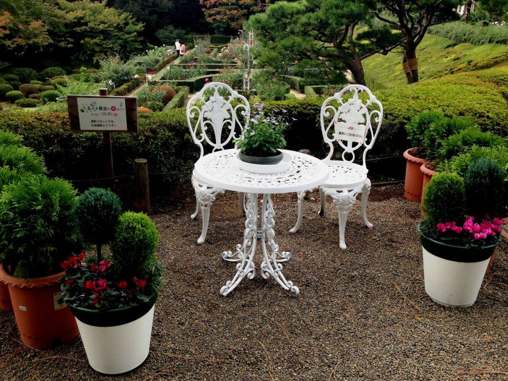 За этим столиком можно посидеть и насладиться прекрасным видом и мороженым из роз