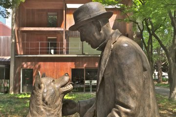 <p>The legendary loyal Akita is finally reunited with his Master, Professor&nbsp;Hidesaburo Ueno,&nbsp;at the Department of Agriculture inside the University of Tokyo. Unveiled March 9, 2015.</p>