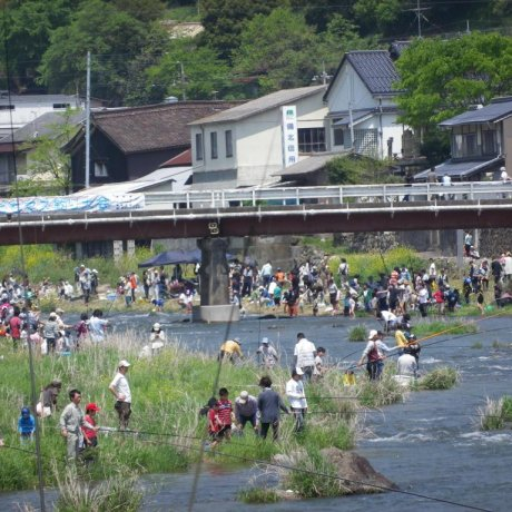 Niimi Fishing Contest