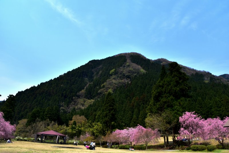 <p>This is the &#39;Takekurabe Park&#39; in Takeda, Fukui. Takekurabe literally means comparing statures, but the name comes from the mountain nearby that has a same name.</p>