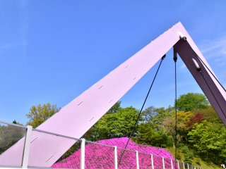 Nishiyama Bridge and pink moss phlox under the blue sky