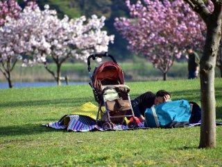 가족이 다른 곳에서 놀고 있는 동안 잔디에서 낮잠을 자는 아버지. 휴일을 보내는 좋은 방법?
