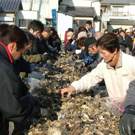 Hinase and Mushiage Oyster Markets