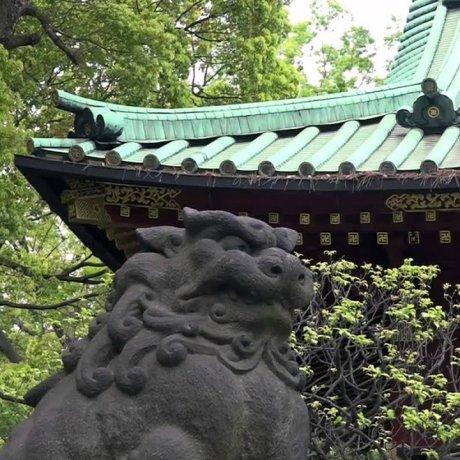 根津神社 – ヤマトタケル創祀の古社