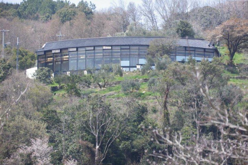 Looking up at Ushimado International Villa