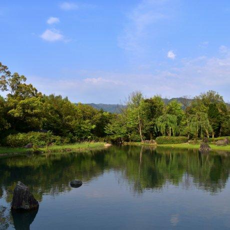 Lush Gardens of Fukui Green Center