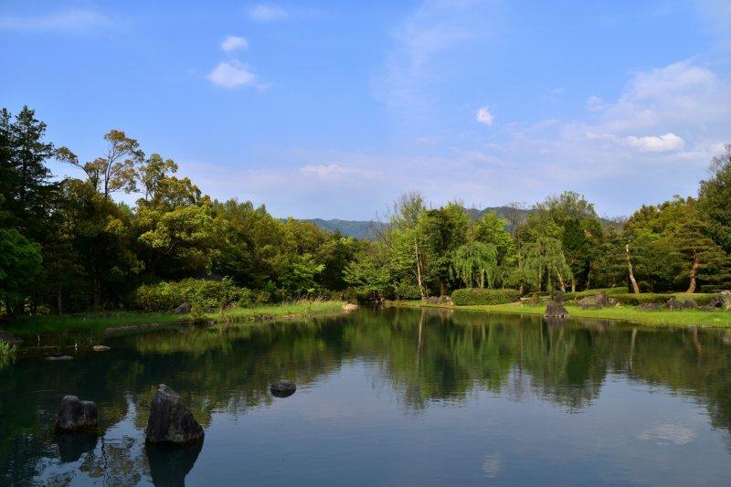 아름다운 조경과 몇몇 정원과 녹색 주택이 있는 식물원 지역의 큰 연못