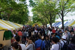 Crowds of happy people exploring the festival in Yoyogi Park