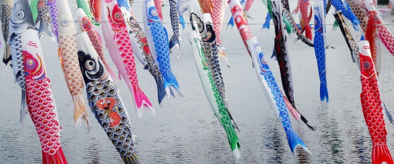 Carp streamers across the Kase River in rural Saga