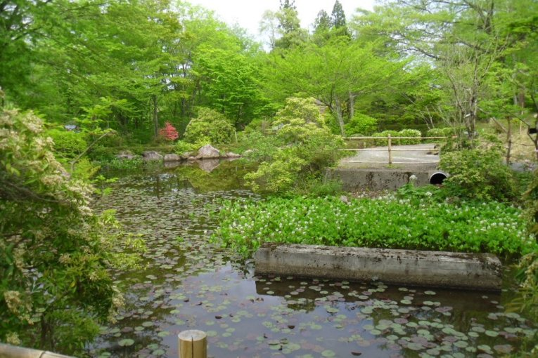 สวนพฤกษศาสตร์น้ำตกอะคิอุ