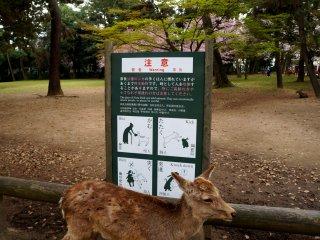공원 곳곳에 세워져 있던 경고 표지판