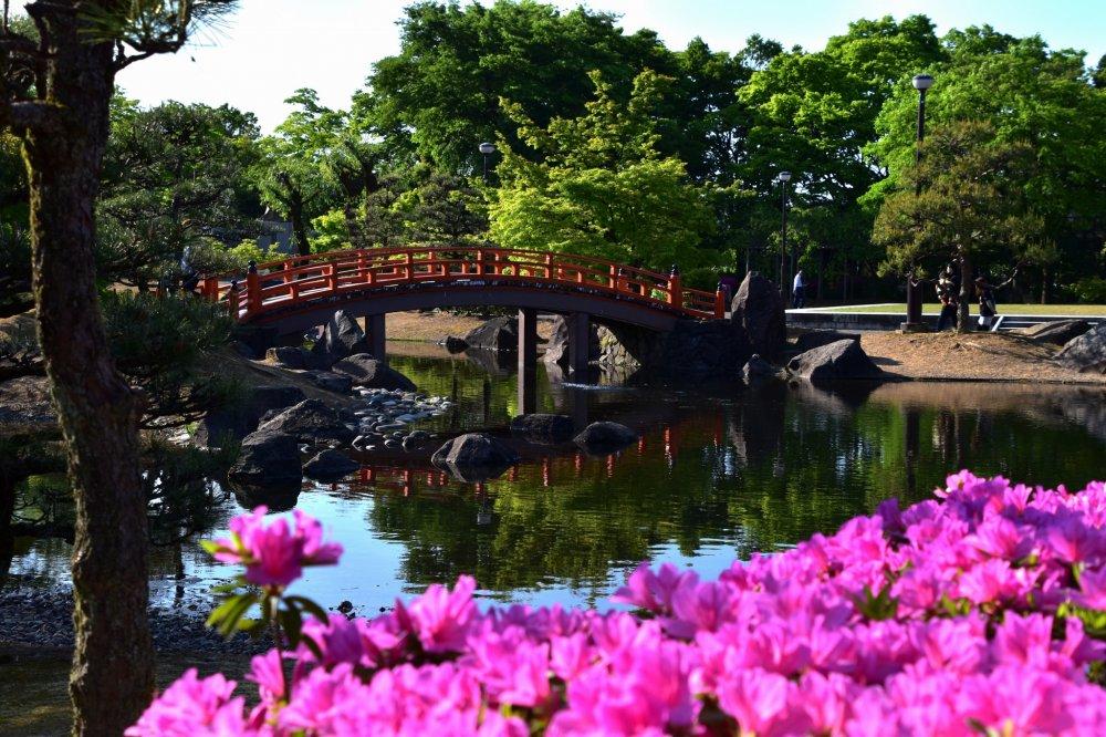 ピンクのツツジが興を添える美しい公園と、池に架かる朱塗りの橋。