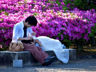 A couple in love enjoying the time alone in a beautiful park