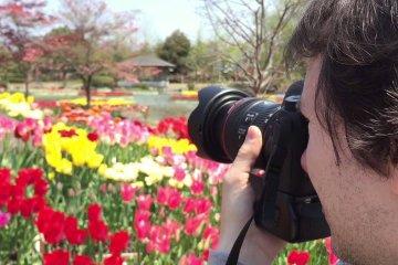 Ярмарка тюльпанов Тонами 2015