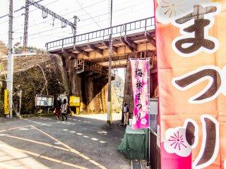แม้ว่าจะมีทางเข้าสวนอยู่หลายทาง แต่ที่ง่ายที่สุดคือทางเข้าตรงสถานี Keikyu Taura  บนรถไฟสาย Keikyu หรือสถานี Taura บนรถไฟสาย JR Yokosuka ที่คุณสามารถรับแผนที่ได้จากทั้งสองสถานี