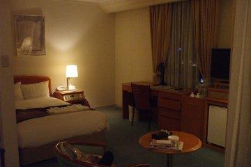 <p>Просторная одноместная комната 25 квадратных метров</p>