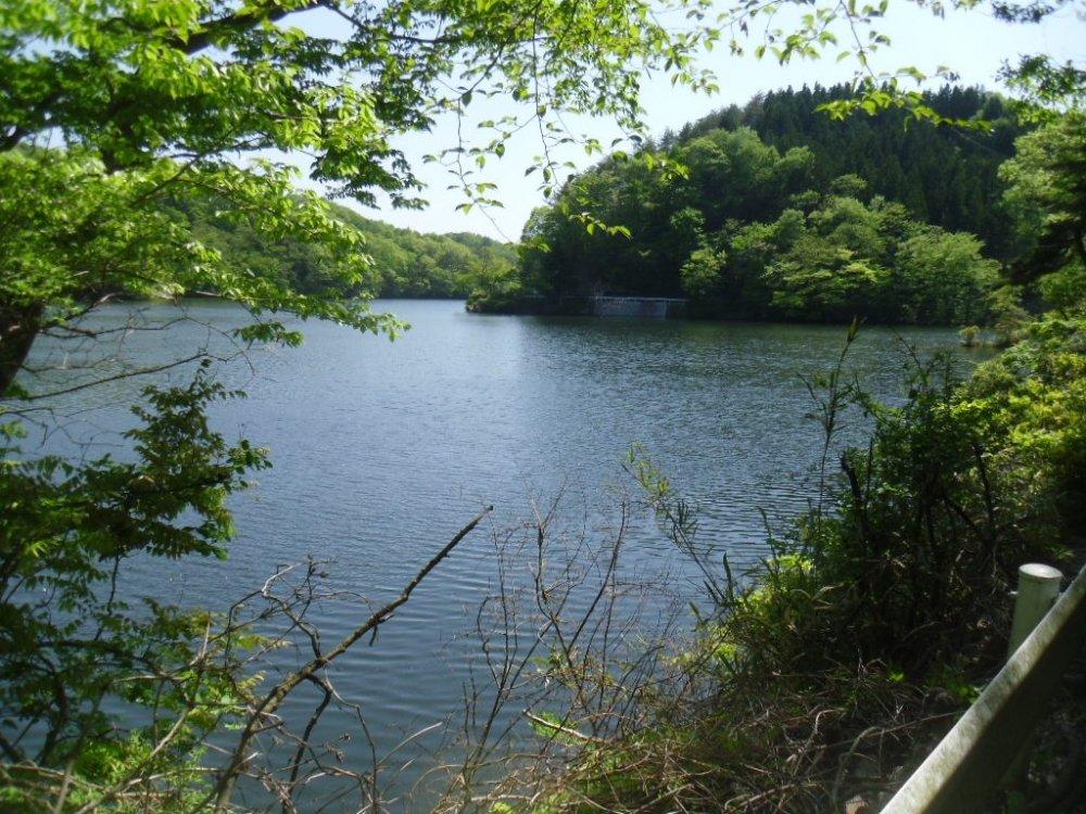 Вы можете просто припарковать вашу машину и прогуляться по берегу озера в окружении природы