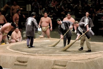 <p>Sweeping the sumo ring</p>