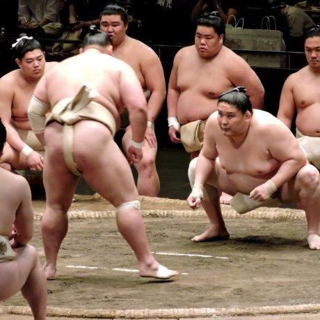 Sumo Wrestling at Ryoguku Kokugikan