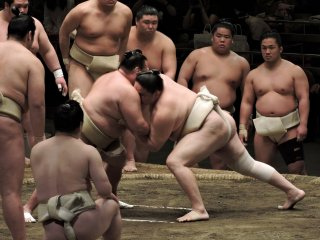 A braced sumo wrestler is pushed across the ring by another wrestler