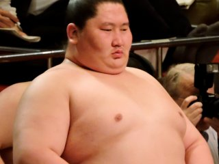 Sumo wrestler Ichinojo watches the ring