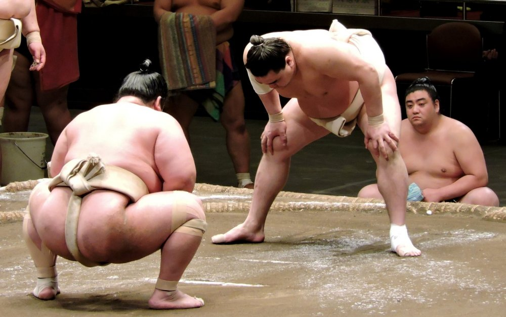 You can see the salt thrown on the sand in the sumo ring