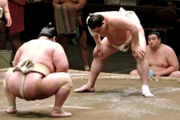 <p>You can see the salt thrown on the sand in the sumo ring</p>