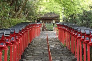 The stairs to the main shrine are lined with beautiful red lanterns.