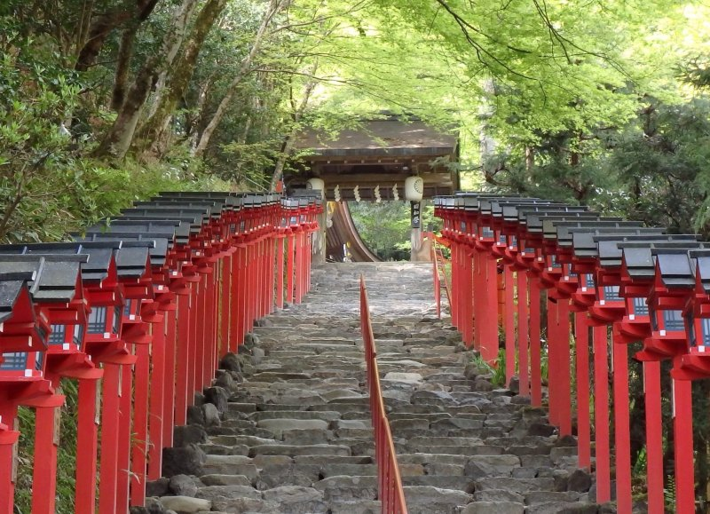 <p>The stairs to the main shrine are lined with beautiful red lanterns.</p>