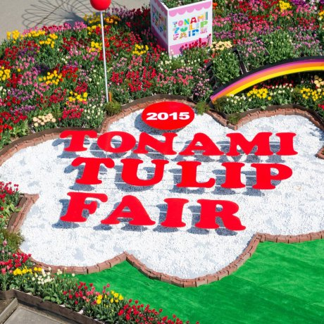 Tonami Tulip Fair