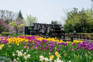 Water wheels surrounded by tulips