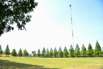 공원에 널찍한 녹색 잔디밭. 아무도 이 공간을 즐기지 않았다는 것을 알 수 있다!는