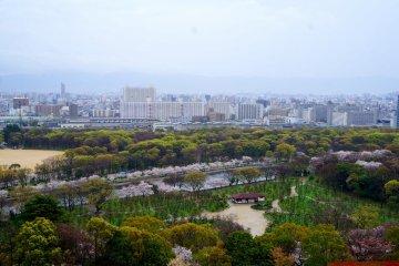 <p>오사카 성 전망대에서 보이던 풍경</p>