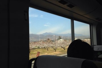 Discover Kanto by Train