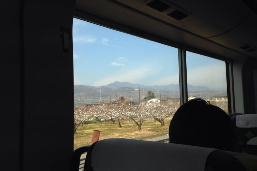 View from the train to Tokyo